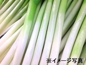 京都市×品質管理/法人【34391】-top
