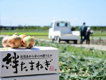 有限会社三田青果-1
