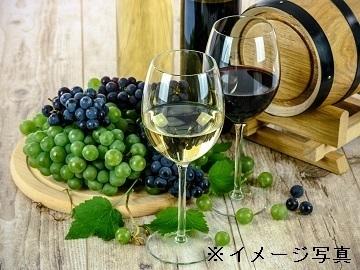 北海道更別村×果樹/法人【34474】-2
