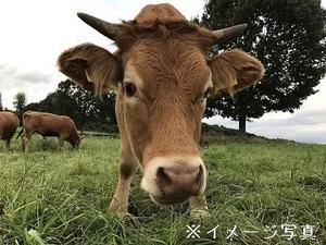 北海道更別村×酪農/法人【34473】-top