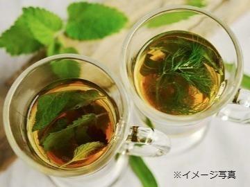 長野県飯山市×野菜/法人【34465】-2