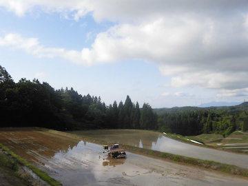 新潟県上越市 おためし農業体験-2