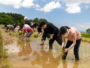新潟県上越市 おためし農業体験-Top