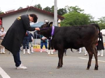 熊本県大津町×競走馬・肉牛/法人【34511】-3