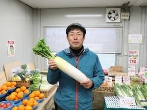 横浜市・平塚市×販売管理(青果)/法人【34411】-top