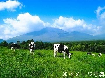 長野県南牧村×酪農/法人【34526】