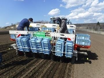 JAつべつ(津別町農業労働力支援協議会)-top春