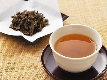 伏拝製茶-2