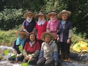 坂上農園株式会社-top