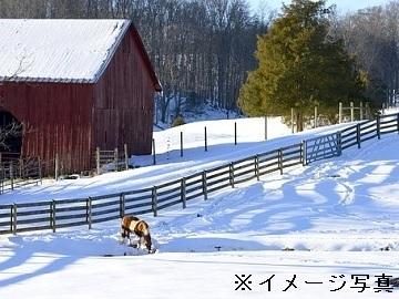 新得町営育成牧場-3