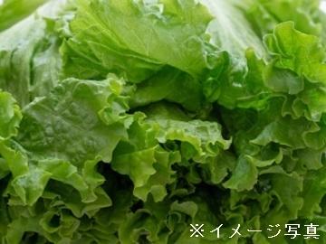 富士ミネラルファーム株式会社-3