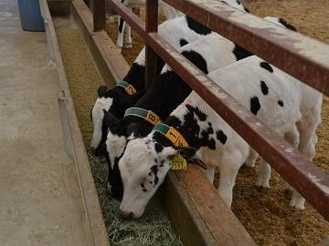 鳥取県畜産農業協同組合-2