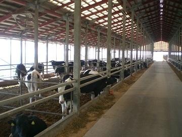 鳥取県畜産農業協同組合-3
