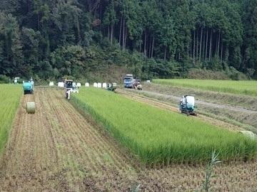 鳥取県畜産農業協同組合-6