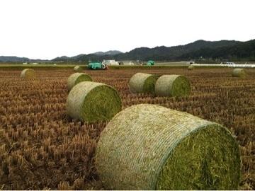 鳥取県畜産農業協同組合-8