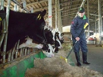 熊本県酪農ヘルパー利用組合-1