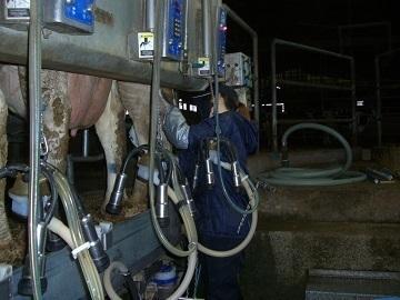 熊本県酪農ヘルパー利用組合-3