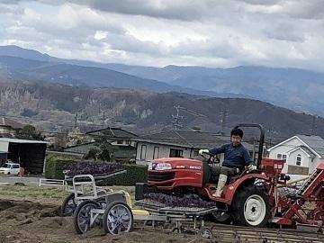 小山農園-3