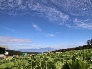 あさひや農場-top