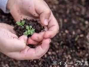 茨城県筑西市×営業・配送/法人【34755】-top
