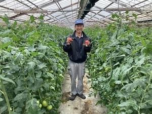 津島農園-top