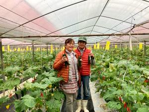 中村農園-top