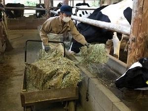 兵庫県酪農ヘルパー利用組合-top