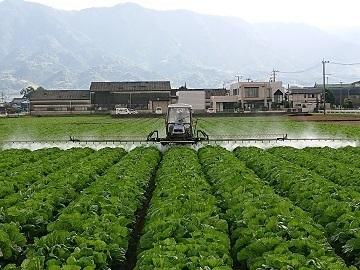 福岡県久留米市×稲作・野菜/法人【34829】-3