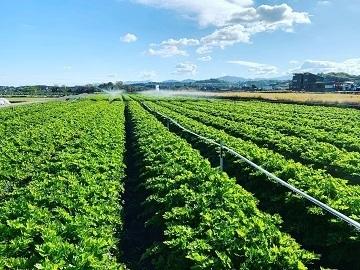 河田農園-5