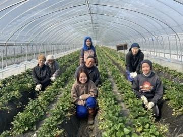 鈴木農園(上三川町)