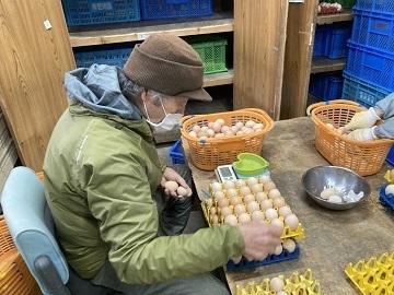 株式会社スリーエム(金田種鶏場)-6