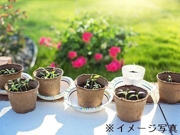 千葉県成田市×園芸/法人【34855】-2