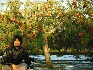くろしばりんご農園-top