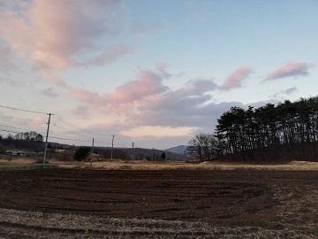 今松農園-3