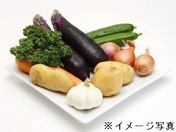 岐阜県本巣市×野菜/個人【34900】-2