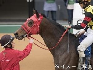 迫田清美厩舎-top