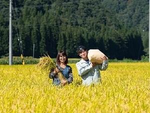 株式会社みつわ農園-top