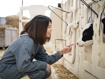 北海道新得町×酪農/法人【34921】-2
