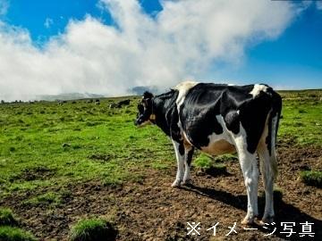 北海道北見市×削蹄/法人【34932】-2