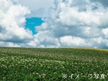 北道-×酪農/法人【34947】-1