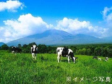 北海道清水町×酪農/法人【34947】-top