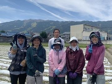 増田農業株式会社-top