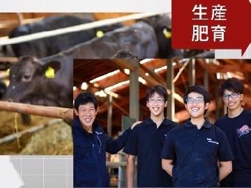 北海道浜中町×肉牛/法人【35125】-2