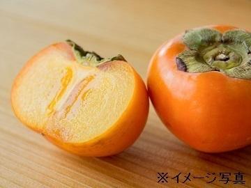 奈良県五條市×果樹/個人【34980】
