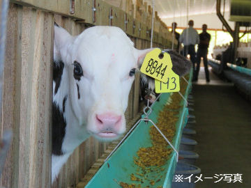 北海道稚内市×飼料製造・配送/法人【34985】-top