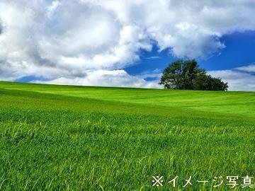 北海道音更町×酪農/個人【35019】-1