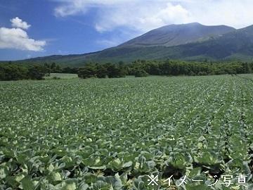マルエイ農園(黒岩栄治)-top