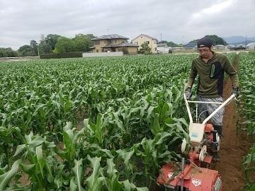 JAPAN AGRI DESIGN株式会社-5