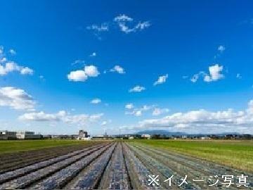 京都府木津川市×野菜/法人【35070】-top