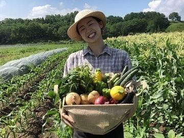 福島県白河市×野菜/法人【35104】-top